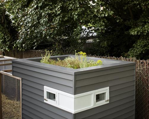 des poules dans mon jardin les aventures d 39 un poulailler urbain page 2. Black Bedroom Furniture Sets. Home Design Ideas